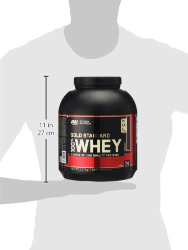 Optimum Nutrition Whey Gold Standard Protein, Double Rich Chocolate, 1er Pack (1 x 2,3kg)