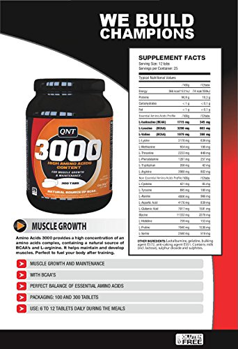 Perfect Amino Acid 3000 + BCAA`s, 300 Stück (3000mg pro Tablette)