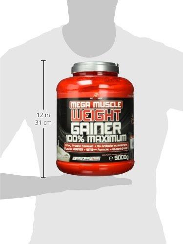 BWG Mega Muscle Weight Gainer 100% Maximum – perfekt für HardGainer und Massephasen – Kraftaufbau – Mega Banana – Dose mit Dosierlöffel – (1x 5000g Dose)