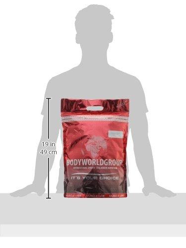 BWG Soja Isolat Protein Shake, 100% (Vegan und Laktosefrei) rein pflanzliches Eiweiss Pulver, Premium Sojaeiweiß, ohne Gentechnik, Vanilla, 1 x 2500 g